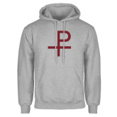 Grey Fleece Hoodie-Labarum
