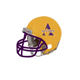 Riddell Replica Gold Mini Helmet-Alcorn Official Logo