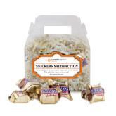 Snickers Satisfaction Gable Box-Ambit Energy Japan