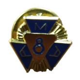 AMA 8 Year Pin-