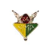 AMA 24 Year Pin-