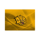 Generic 13 Inch Skin-Golden Lion Head
