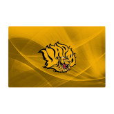 Generic 15 Inch Skin-Golden Lion Head