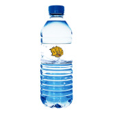 Water Bottle Labels 10/pkg-Golden Lion Head
