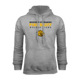 Grey Fleece Hoodie-University of Arkansas Pine Bluff Golden Lions