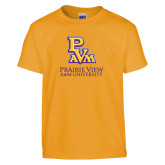 Youth Gold T Shirt-PVAM Stacked