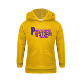 Youth Gold Fleece Hoodie-PV Marching Storm Band