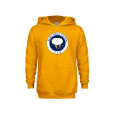 Youth Gold Fleece Hoodie-Marching Storm Cloud Circle - Fan