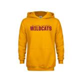 Youth Gold Fleece Hoodie-Bethune Cookman Wildcats Stacked