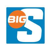 Medium Decal-Big S, 8in Tall