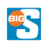 Small Decal-Big S, 6in Tall