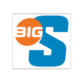 Small Decal-Big S