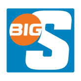 Extra Large Decal-Big S, 18in Tall