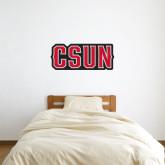 1 ft x 3 ft Fan WallSkinz-CSUN
