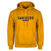 College Gold Fleece Hoodie-Retro Logo 4