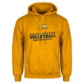 Gold Fleece Hoodie-Can You Dig It - Volleyball
