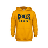 Youth Gold Fleece Hoodie-Hockey