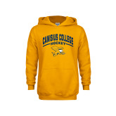 Youth Gold Fleece Hoodie-Arched Canisius College Hockey