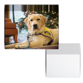 Yellow Puppy with Lights Holiday Cards 12/pkg-