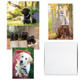 Puppy A7 Cards 12/pkg-