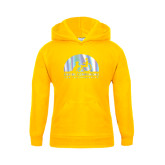 Youth Gold Fleece Hoodie-Foil