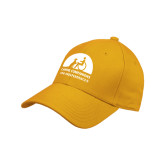 Adidas Gold Structured Adjustable Hat-