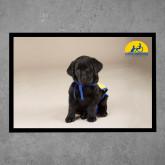 Full Color Indoor Floor Mat-Black Puppy