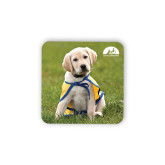Hardboard Coaster w/Cork Backing-Gold Puppy