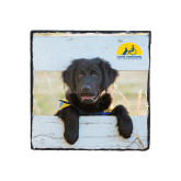 Photo Slate-Dog on Fence