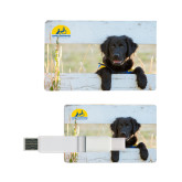 Card USB Drive 4GB-Dog on Fence