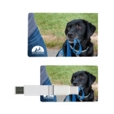 Card USB Drive 4GB-Dog with Leash