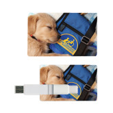 Card USB Drive 4GB-Dog Sleeping