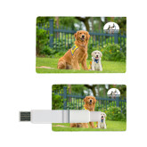Card USB Drive 4GB-Big Dog with Puppy