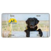 License Plate-Dog on Fence