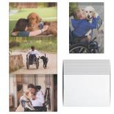 Assistance Dog Cards 12/pkg-