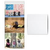 Patriotic Pups Note Cards Variety Pack 12/pkg-