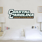 2 ft x 6 ft Fan WallSkinz-Coastal Carolina Chanticleers