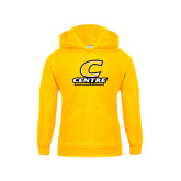 Youth Gold Fleece Hood-Swimming and Diving
