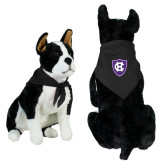 Black Pet Bandana-HC Shield