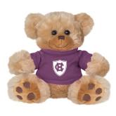 Plush Big Paw 8 1/2 inch Brown Bear w/Purple Shirt-HC Shield