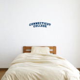 6 in x 2 ft Fan WallSkinz-Arched Connecticut College