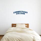 1 ft x 3 ft Fan WallSkinz-Arched Connecticut College