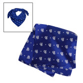 Blue Silk Scarf 24 in.-North Star