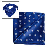 Blue Silk Scarf 38 in.-North Star