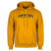 Gold Fleece Hoodie-Arched Coppin State Eagles