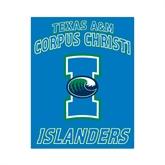 Small Magnet-Texas A&M Corpus Christi Islanders, 6 in H