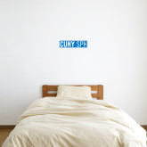 6 in x 1 ft Fan WallSkinz-CUNY SPH