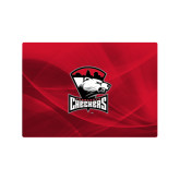 Generic 13 Inch Skin-Charlotte Checkers - Offical Logo