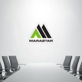 3 ft x 3 ft Fan WallSkinz-Marastar
