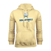 Champion Vegas Gold Fleece Hood-Volleyball Can You Dig It